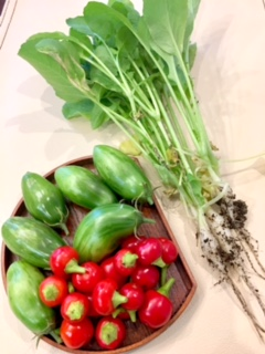 チェリーペッパーとグリーントマト.jpeg